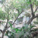 Apartments Brokers Vile Parle