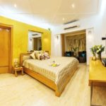 Duplex Penthouses South Mumbai