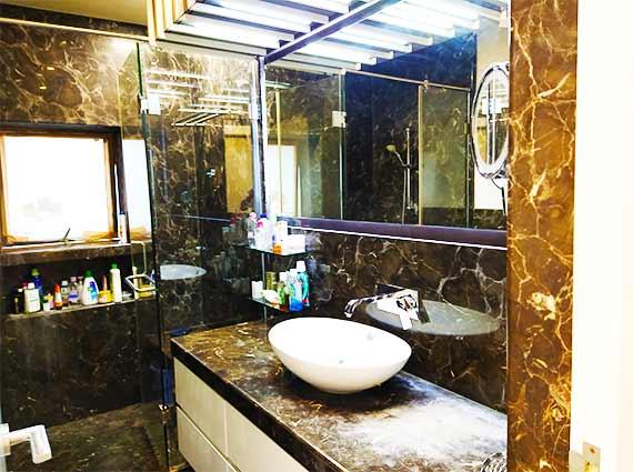 Furnished Luxury Homes South Mumbai