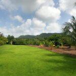 Homes With Gardens Alibag