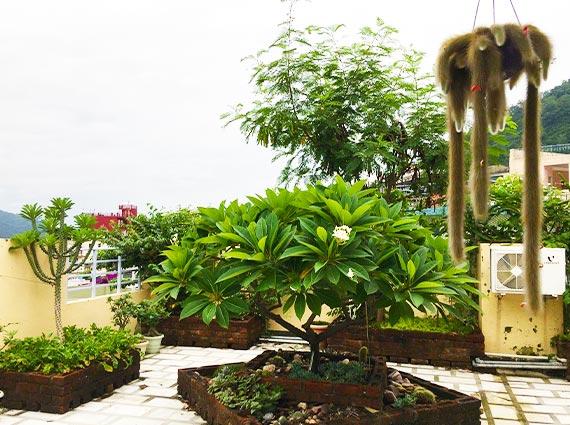 Terrace Apartments Rishikesh Deecon Valley