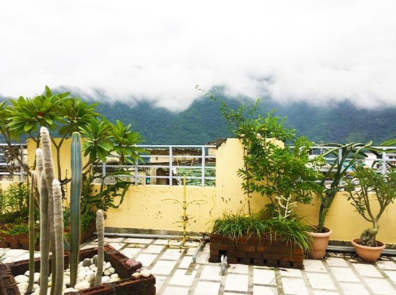 Misty Moutain Views Rishikesh