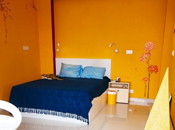 Terrace 3 BHK Duplex Sale Rishikesh
