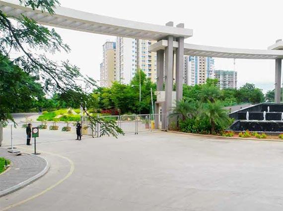 the designate for sale mumbai